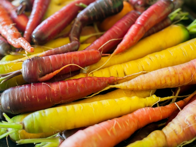 Heirloom carrots of different colours lying in a pile.