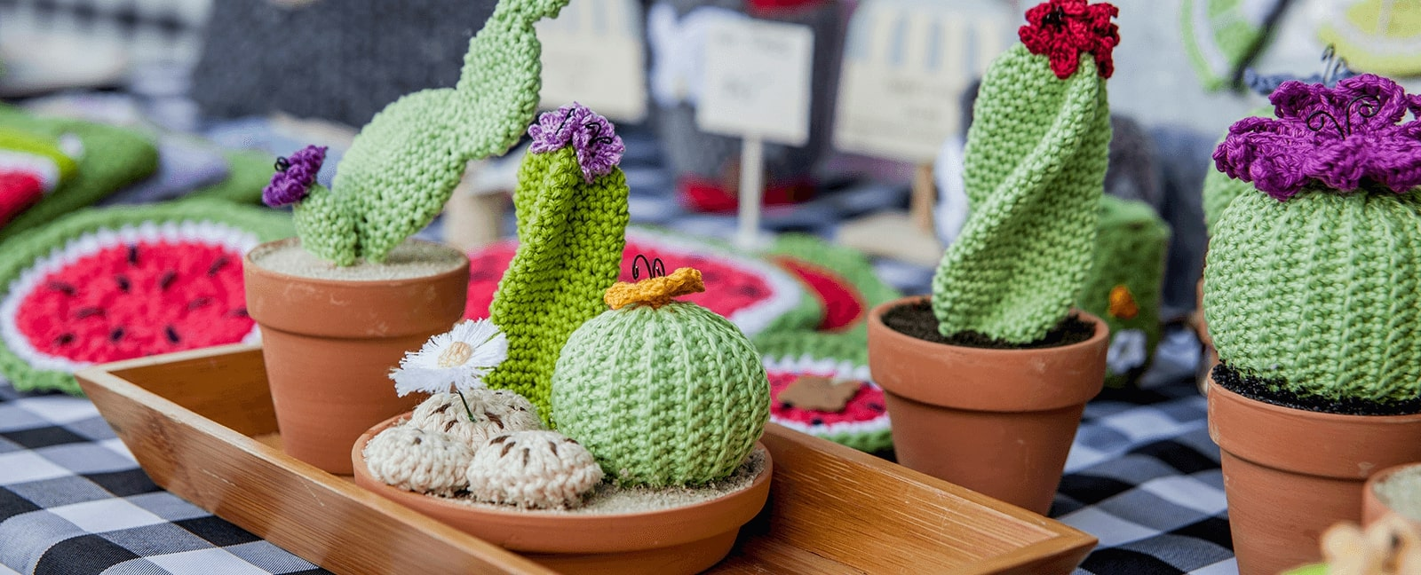 Handcrafted cacti and succulents made by an artisan vendor at the Kitchener Market.